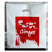 ג׳ינג׳ר :: שקית משלוחים